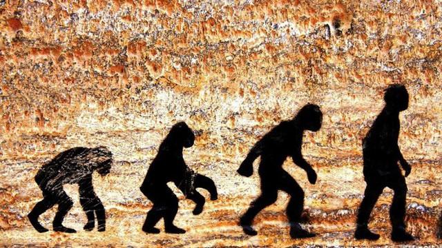 Nghiên cứu lạ: Càng tiến hóa người Đông Á càng không uống được bia rượu - Ảnh 1.