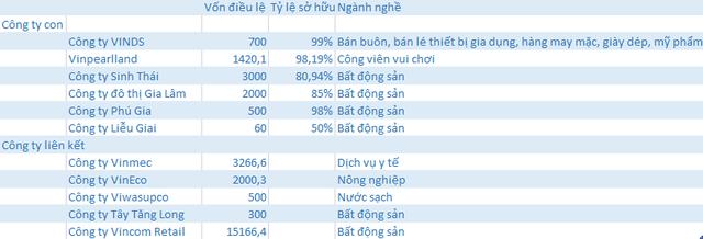 Sau 7 năm được Phó Chủ tịch Vingroup Nguyễn Việt Quang dẫn dắt, doanh thu công ty này tăng 4.500 lần, lợi nhuận tăng 1.400 lần - Ảnh 4.