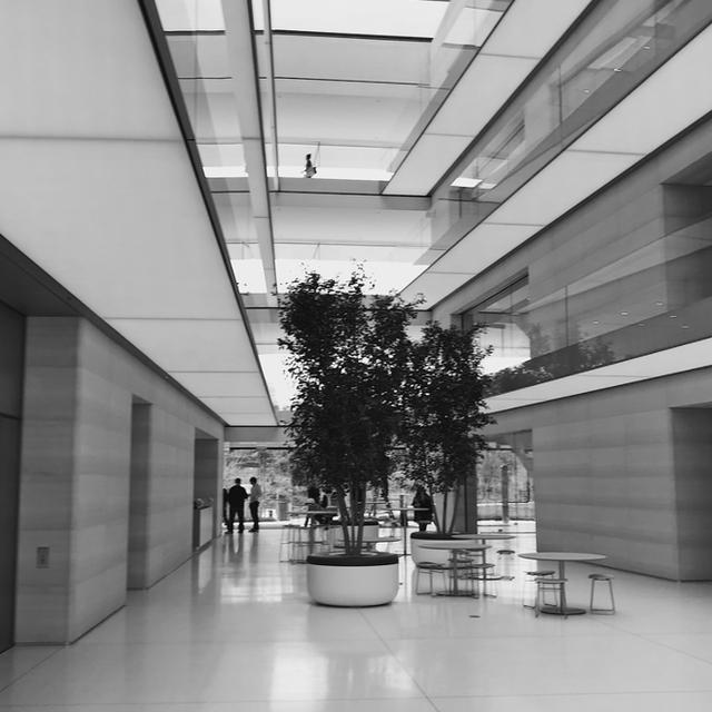 Chiêm ngưỡng ảnh chụp từ bên trong trụ sở 5 tỷ USD mới của Apple - Ảnh 8.
