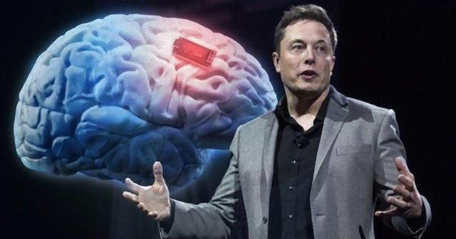 Tôi đã làm việc với Elon Musk và học được rằng thông minh không phải là chìa khóa thành công - Ảnh 1.