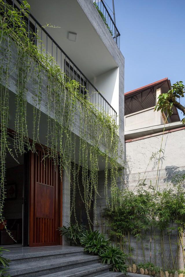 Ngôi nhà nhìn đâu cũng thấy cây xanh và có hẳn một vườn rau trên sân thượng cực rộng ở Hà Nội - Ảnh 2.