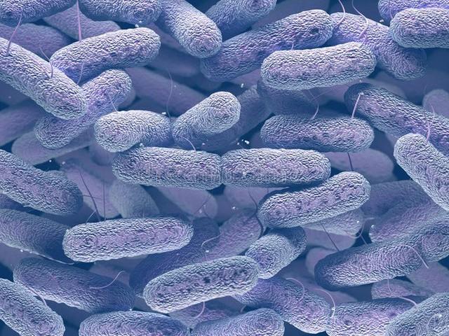 Kháng sinh mạnh nhất đang bị siêu vi khuẩn kháng lại một cách bí ẩn - Ảnh 1.
