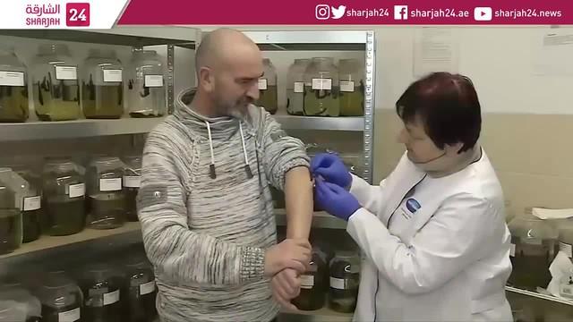Đỉa trong y học: Tại sao mỗi năm người Nga dùng tới 10 triệu con đỉa để chữa bệnh? - Ảnh 1.