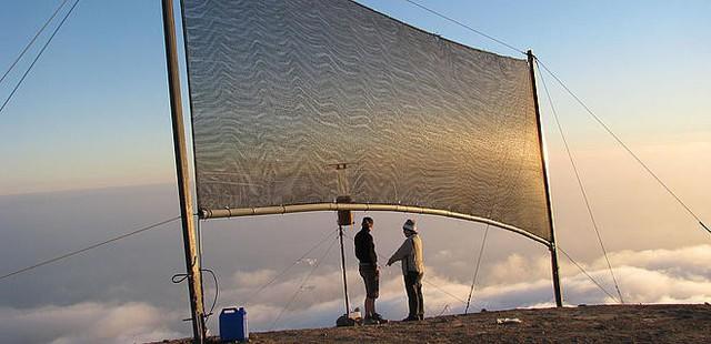 Kỳ tích Peru: Bỏ ra 500 USD giăng lưới bắt sương, một ngôi làng thu được hàng trăm lít nước ngọt mỗi ngày, tiết kiệm 60% lượng nước tiêu dùng - Ảnh 1.