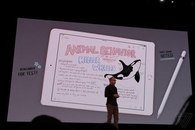 Apple ra mắt iPad mới dành riêng cho giáo dục, màn hình 9,7 inch, hỗ trợ Apple Pencil, giá từ 329 USD, giảm 30 USD nếu dùng cho các tổ chức giáo dục - Ảnh 4.