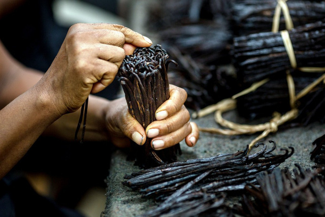 Thế giới đang trong cơn khủng hoảng Vanilla - Ảnh 1.