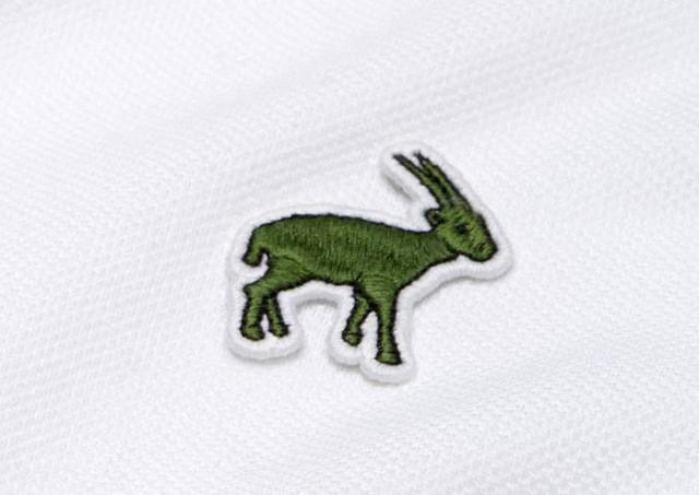 Lacoste thay thế logo cá sấu trên áo polo bằng 10 loài động vật có nguy cơ tuyệt chủng - Ảnh 12.