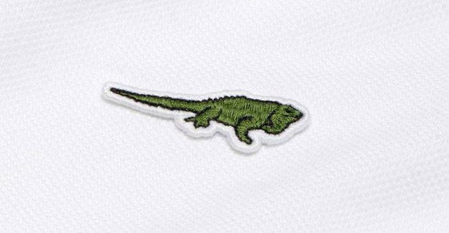 Lacoste thay thế logo cá sấu trên áo polo bằng 10 loài động vật có nguy cơ tuyệt chủng - Ảnh 11.