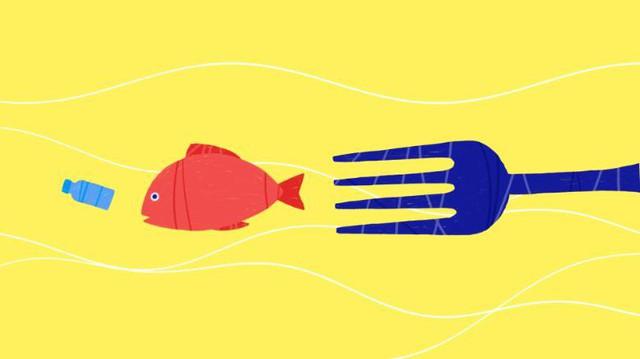Báo động thật rồi: Ô nhiễm rác nhựa ngày càng gây nguy hiểm cho cuộc sống chúng ta - Ảnh 1.