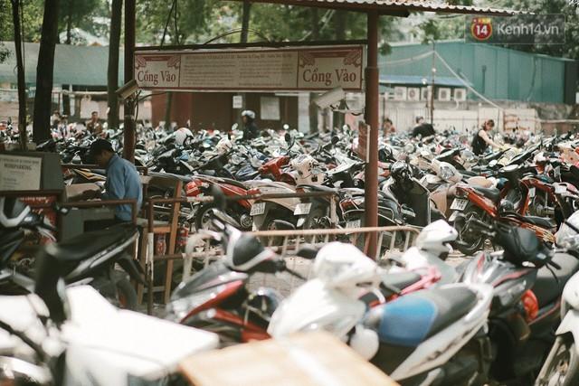 Nghỉ lễ 30/4, người dân Hà Nội đổ xô đến Công viên Thủ Lệ vui chơi, nằm trên bãi cỏ trốn nóng - Ảnh 2.