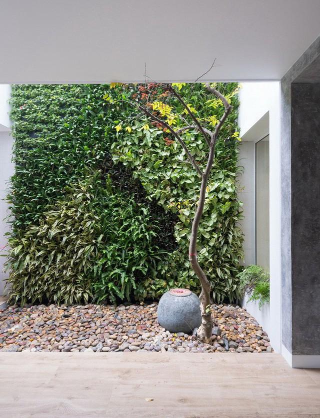 Ngôi nhà mọi không gian đều xanh, sạch, đẹp đến đáng ước ao ở khu đô thị đắt đỏ nhất nhì Hà Nội - Ảnh 3.