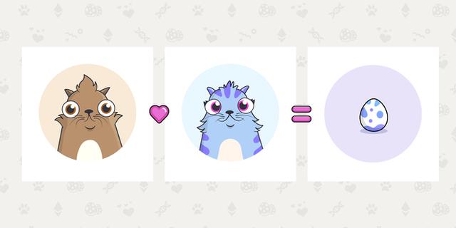 Đồng sáng lập Reddit đưa ra lý do tại sao cư dân mạng Internet lại yêu mèo đến thế, câu trả lời đơn giản đến bất ngờ - Ảnh 3.
