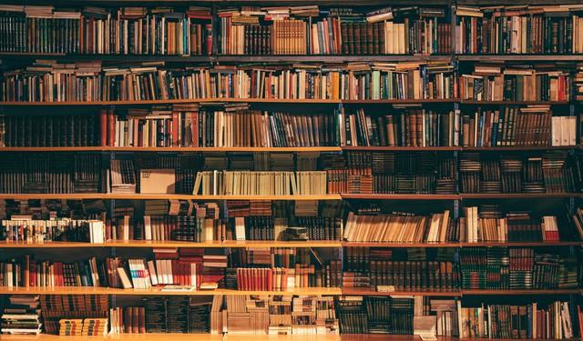 Lượng sách bạn đọc đến đâu quyết định mức thành công cuộc đời: Bài học từ giáo dục văn hóa đọc của một thế hệ người - Ảnh 1.