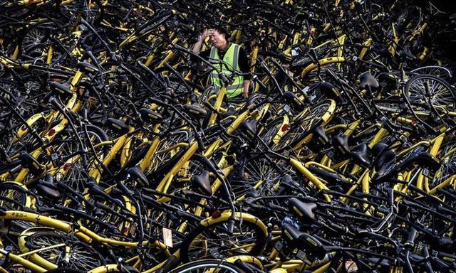 Hãi hùng ngắm nhìn mồ chôn tập thể của hàng triệu chiếc xe đạp tại Trung Quốc - Ảnh 14.