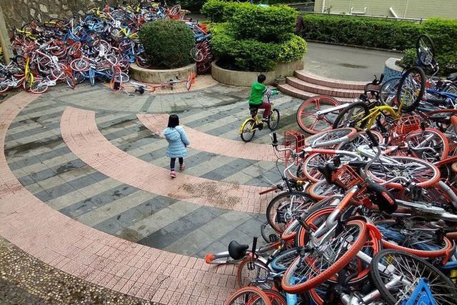 Hãi hùng ngắm nhìn mồ chôn tập thể của hàng triệu chiếc xe đạp tại Trung Quốc - Ảnh 15.