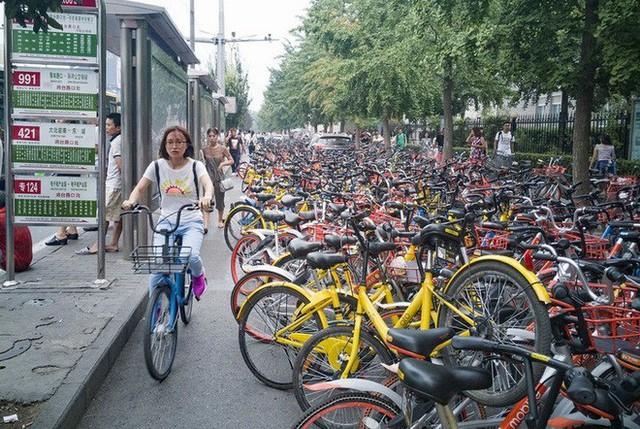 Hãi hùng ngắm nhìn mồ chôn tập thể của hàng triệu chiếc xe đạp tại Trung Quốc - Ảnh 16.