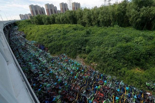 Hãi hùng ngắm nhìn mồ chôn tập thể của hàng triệu chiếc xe đạp tại Trung Quốc - Ảnh 17.