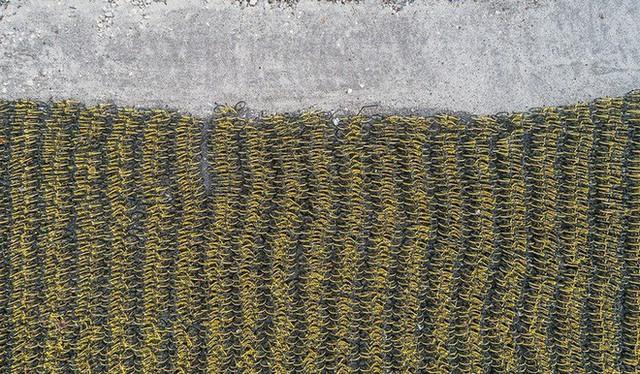 Hãi hùng ngắm nhìn mồ chôn tập thể của hàng triệu chiếc xe đạp tại Trung Quốc - Ảnh 9.