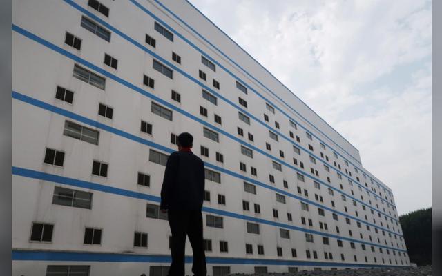 Người Trung Quốc xây hẳn khách sạn 7 tầng để... nuôi lợn - Ảnh 1.