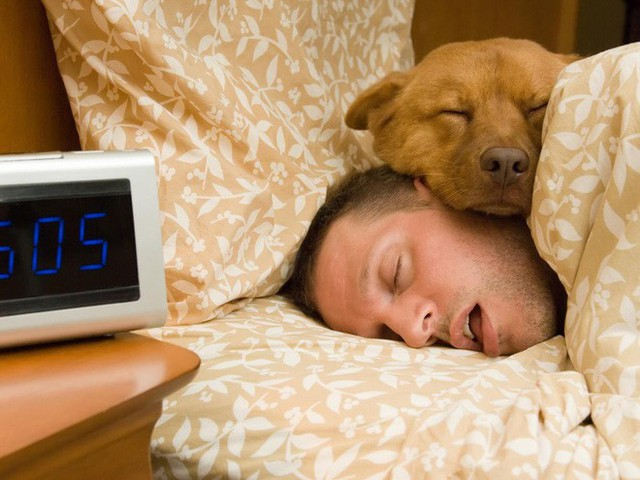 Thói quen ngủ nướng vào cuối tuần hóa ra đem lại tác dụng có lợi không tưởng - Ảnh 1.