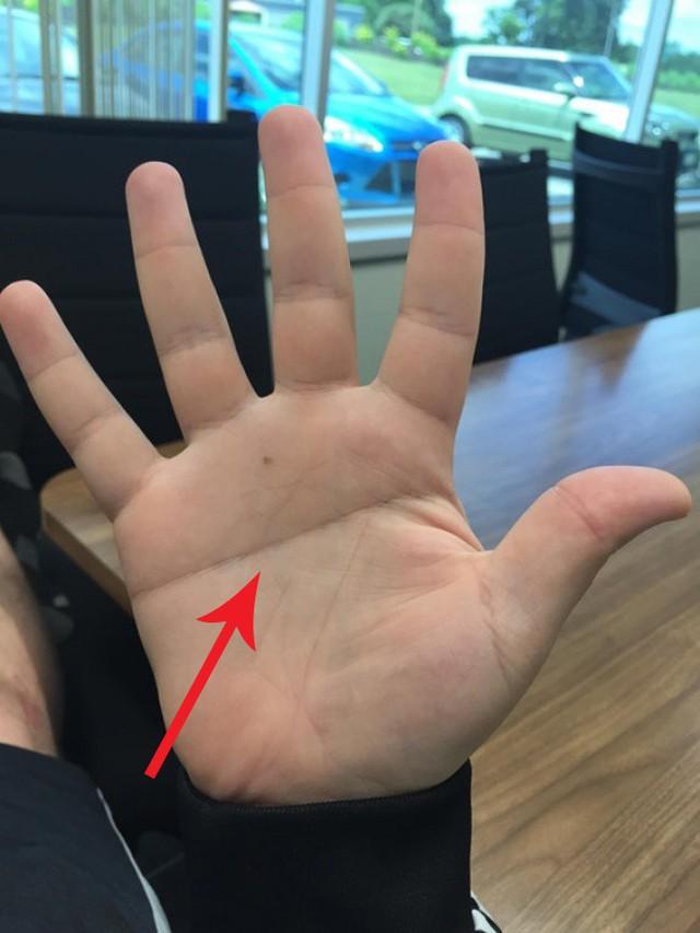 Nhìn vào lòng bàn tay mình và xem đi, nếu sở hữu đường chỉ tay như thế này, bạn đúng là của hiếm của thế giới, tài giỏi thông minh hơn người - Ảnh 4.
