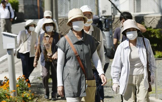 Trong khi cả thế giới muốn đến Nhật Bản ngắm hoa thì người dân nước này lại khốn khổ vì dị ứng phấn hoa, thiệt hại kinh tế hàng tỷ USD mỗi năm - Ảnh 1.
