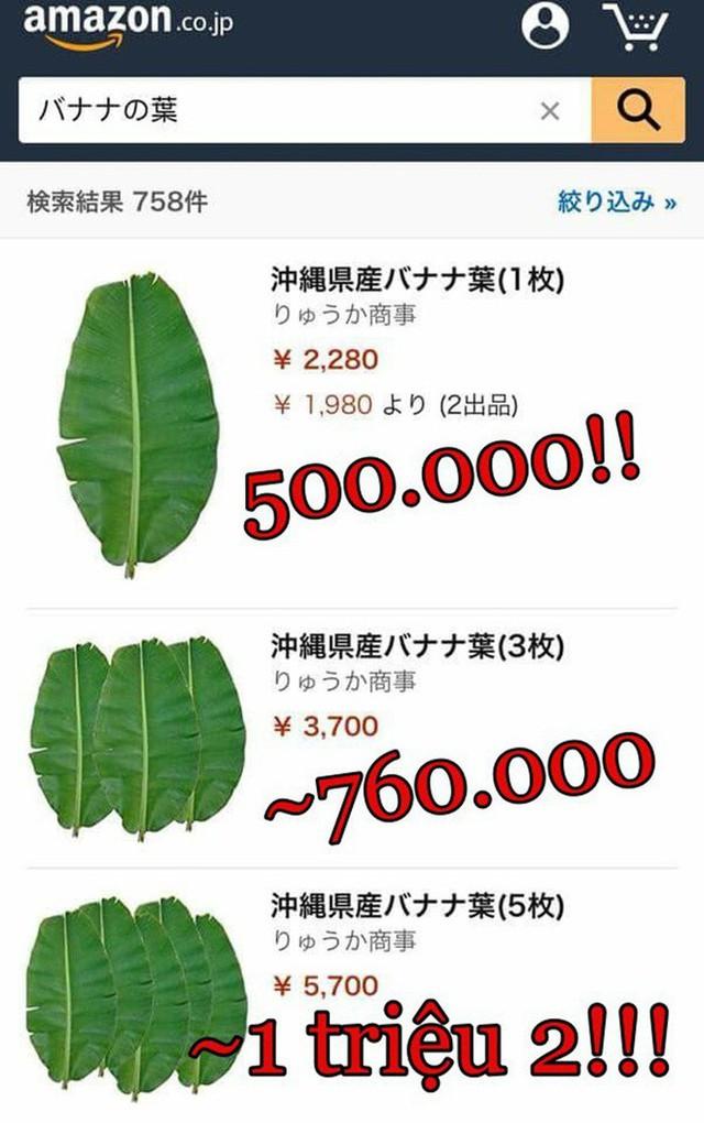 Chùm ảnh: Choáng với những món đồ ở Việt Nam thì cho không ai lấy, sang Nhật Bản thì thành cao lương mĩ vị mất cả đống tiền mới mua được - Ảnh 3.