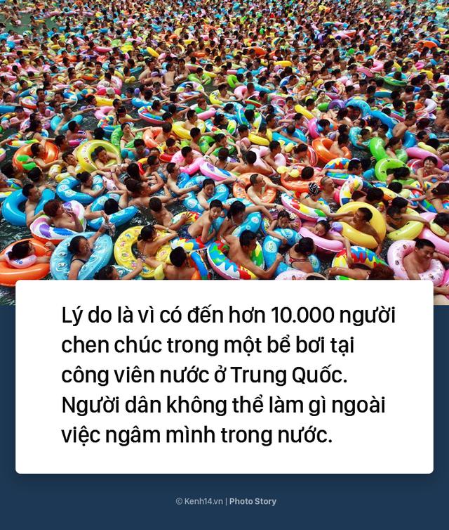 Đến hẹn lại lên: Vừa vào hè, bể bơi ở Trung Quốc đã đông tới mức phải gạt người ra để nhìn thấy nước - Ảnh 3.