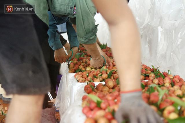 Về Bắc Giang thăm người dân Lục Ngạn trước thông tin 10 ngàn 3kg vải thiều: Làm gì có chuyện chúng tôi ném vải xuống sông - Ảnh 7.