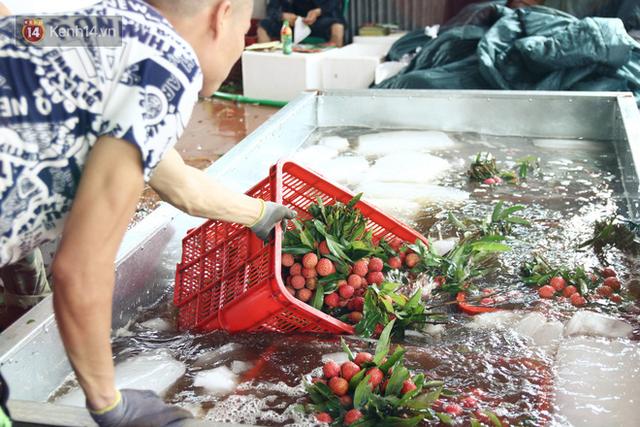 Về Bắc Giang thăm người dân Lục Ngạn trước thông tin 10 ngàn 3kg vải thiều: Làm gì có chuyện chúng tôi ném vải xuống sông - Ảnh 9.