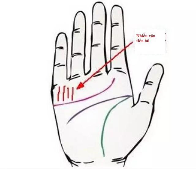 Tay trái nắm quyền tay phải nắm tiền: Tiết lộ ba bàn tay bẩm sinh có quyền thế và tiền tài - Ảnh 1.