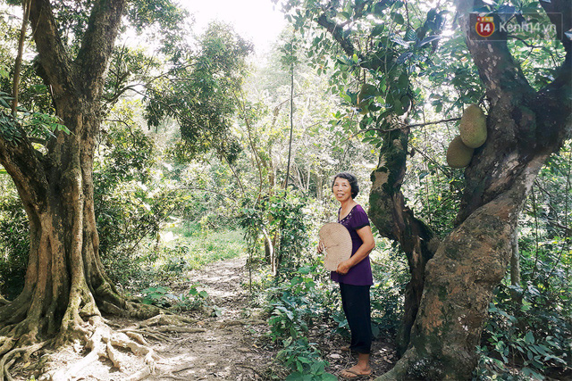 Cô giáo về hưu 15 năm sống trên ốc đảo ở Vĩnh Phúc: Không ra chợ, không biết bệnh tật và không cần đến tiền! - Ảnh 1.