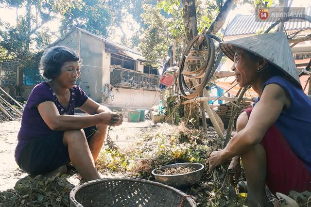 Cô giáo về hưu 15 năm sống trên ốc đảo ở Vĩnh Phúc: Không ra chợ, không biết bệnh tật và không cần đến tiền! - Ảnh 3.