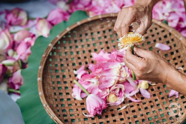 Trà dệt hương sen - thứ trà ủ cả ngàn bông sen Hồ Tây đầy tinh tế của Hà Nội - Ảnh 4.