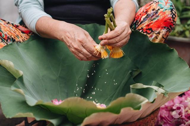 Trà dệt hương sen - thứ trà ủ cả ngàn bông sen Hồ Tây đầy tinh tế của Hà Nội - Ảnh 5.