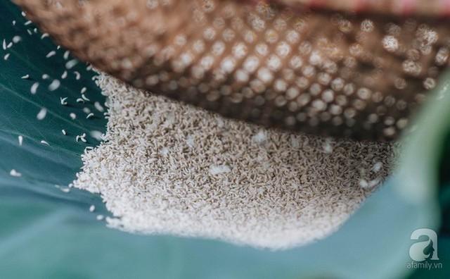 Trà dệt hương sen - thứ trà ủ cả ngàn bông sen Hồ Tây đầy tinh tế của Hà Nội - Ảnh 10.