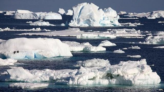 Băng ở Nam Cực đang tan chảy với tốc độ nhanh hơn dự kiến, nhưng tại sao đó lại là một tin tốt? - Ảnh 1.