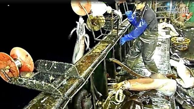 Trung Quốc đang vét sạch tài nguyên biển và thống trị thị trường hải sản bằng cách nào? - Ảnh 7.