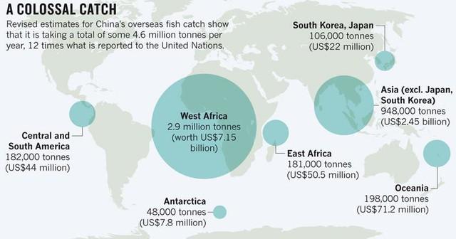Trung Quốc đang vét sạch tài nguyên biển và thống trị thị trường hải sản bằng cách nào? - Ảnh 1.