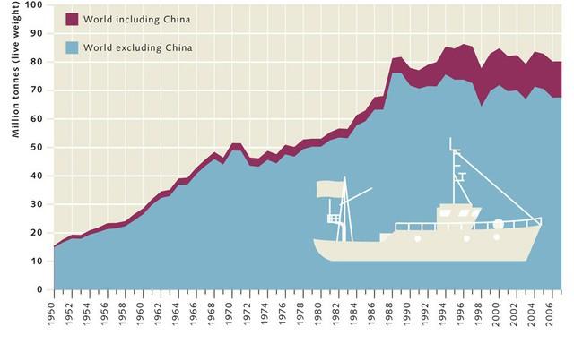 Trung Quốc đang vét sạch tài nguyên biển và thống trị thị trường hải sản bằng cách nào? - Ảnh 2.