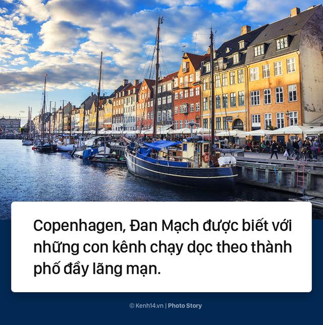 Đan Mạch: Nhặt đủ 1 thùng rác, du khách được thuê thuyền miễn phí - Ảnh 1.