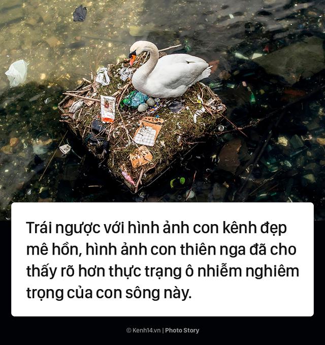 Đan Mạch: Nhặt đủ 1 thùng rác, du khách được thuê thuyền miễn phí - Ảnh 3.