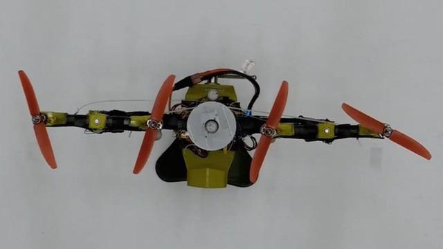 Nghiên cứu thành công robot có thể gập cánh khi bay qua không gian hẹp lấy ý tưởng từ đôi cánh của loài chim - Ảnh 2.