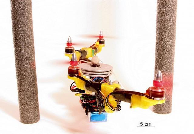 Nghiên cứu thành công robot có thể gập cánh khi bay qua không gian hẹp lấy ý tưởng từ đôi cánh của loài chim - Ảnh 3.