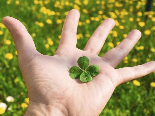 5 thói quen đơn giản, dễ làm nhưng đem lại thành công, hạnh phúc ngoài dự kiến cho bất kỳ ai - Ảnh 1.