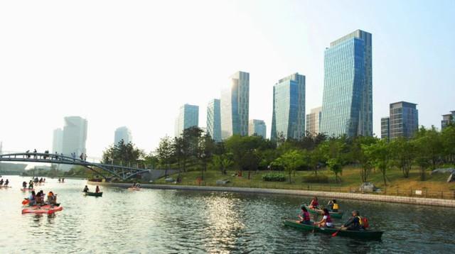 """Bên trong quận kinh tế """"không ô tô"""" 40 tỷ USD của Hàn Quốc - Ảnh 12."""