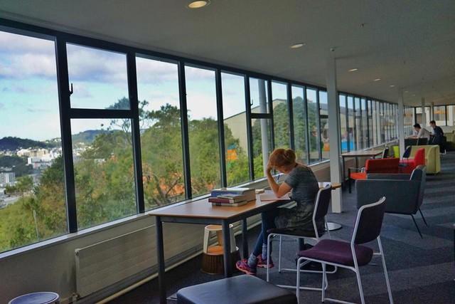 du học New Zealand qua góc nhìn của travel blogger Thiện Nguyễn a6