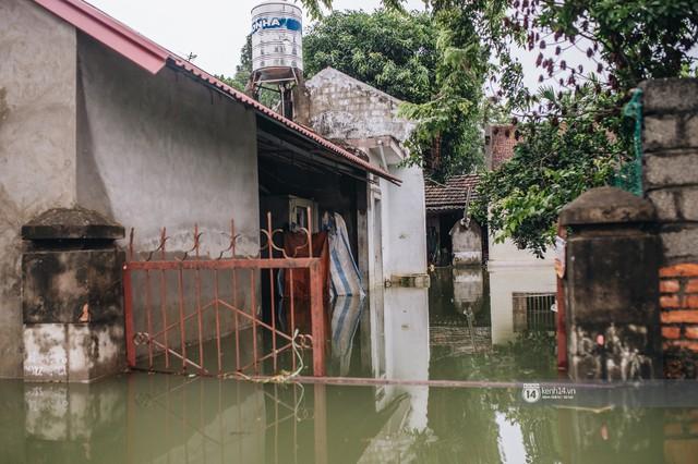 Chùm ảnh: 1 tuần sau lũ lớn, người dân Hà Nội vẫn phải chèo thuyền di chuyển giữa biển rác thải nổi lềnh bềnh - Ảnh 2.