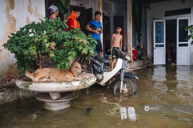 Chùm ảnh: 1 tuần sau lũ lớn, người dân Hà Nội vẫn phải chèo thuyền di chuyển giữa biển rác thải nổi lềnh bềnh - Ảnh 11.