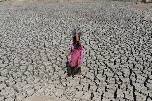 Thời tiết nóng bất thường trên Trái Đất sẽ kéo dài đến năm 2022 - Ảnh 1.